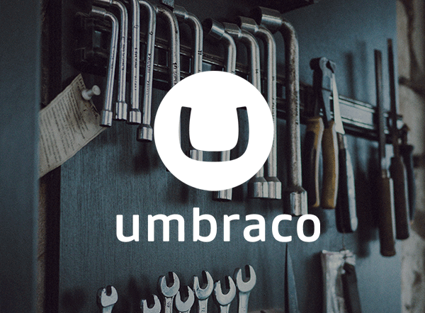 umbraco-cms-whitepaper-html24