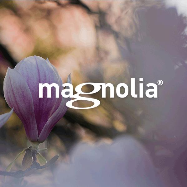 magnolia-cms-whitepaper-html24