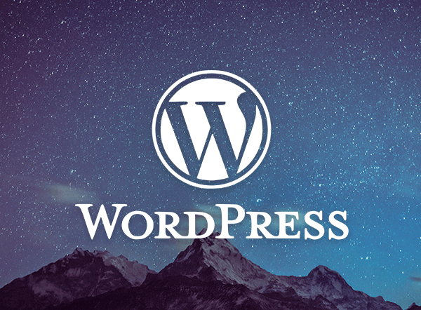 wordpress-cms-whitepaper-html24